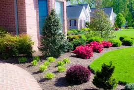 Landscaping Ideas For Front Yards Door Design Terrific Green Round Modern Soil Front Yard Plants