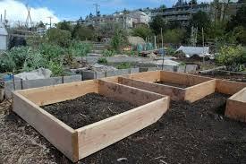 preparing a vegetable garden for spring 5 tips to follow