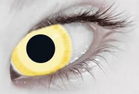 yellow contact lens yellow contacts coloured contact lenses