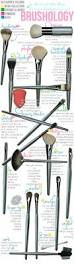 different types of makeup brushes and their uses u2026 pinteres u2026