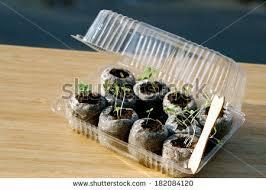 mini greenhouse stock images royalty free images u0026 vectors
