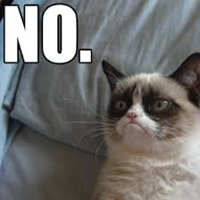 No Grumpy Cat Meme - grumpy cat meme funny collection world