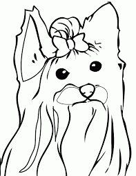 yorkie coloring pages coloring home