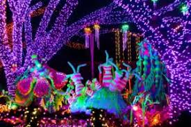 houston zoo lights coupon kids bored busy projects with a purpose houston family magazine