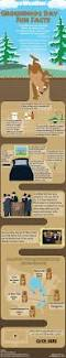 facts about the history of thanksgiving 59 best fun facts images on pinterest fun facts facts about and