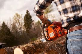 how to buy the best chainsaw find chainsaws for sale