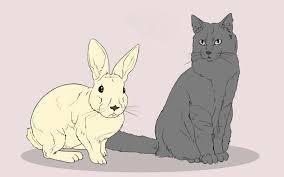 3 ways to draw animals wikihow
