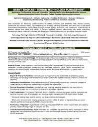 Cio Resume Sample by Resume For Service Manager Free Resume Example And Writing Download