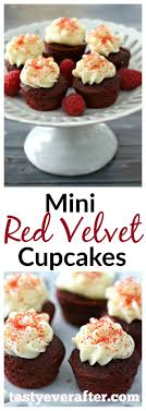 thanksgiving mini cupcake recipes cake recipes