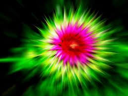 flower bloom by nano phreak on deviantart