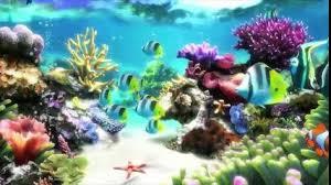 waptrick film kartun anak upin ipin air dan ikan lagu anak anak 2018 video dailymotion