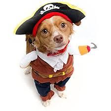 Halloween Costume Large Dogs Amazon Pirate Dog Pet Costume Size Large Dog Pirate Hat