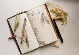 travelers notebook images Traveler 39 s notebook coffee brown september leather jpg