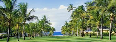 welcome to nisbet plantation beach club a nevis hotel on the beach