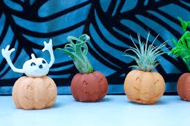 halloween aesthetic halloween pumpkin air plant holders