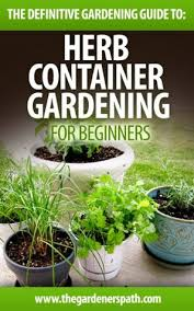 container herb gardening the definitive guide to container herb