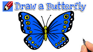 how to draw a butterfly easy for and beginners
