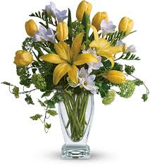 freesia flower freesia flower meaning symbolism teleflora