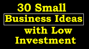 30 small business ideas with low investment