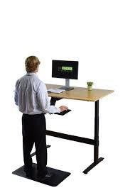 Ergonomic Sit Stand Desk Rise Up Electric Adjustable Height Standing Desk Office Desks