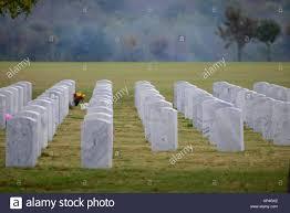 headstones houston headstones stand at the gravesites of many fallen veterans