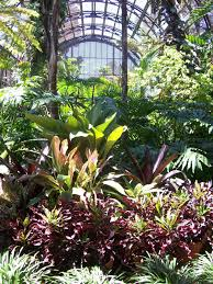 Balboa Park Botanical Gardens by Intuitive Value San Diego Vacation Balboa Park Botanical Bldg