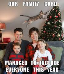 Family Christmas Meme - cat photobombs family christmas picture funny cat memes