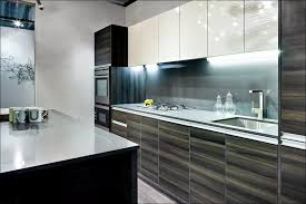Painted Old Kitchen Cabinets by Kitchen Best Paint For Cabinets Painting Old Kitchen Cabinets