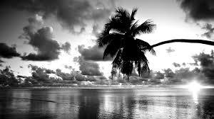 100 black and white wallpaper latest black u0026 white hd