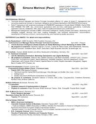 Oracle Project Manager Resume Free by Essay On Pollution In Pdf Format How To Write Assignment
