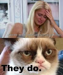 Best Grumpy Cat Memes - the whole world hates me grumpy cat meme