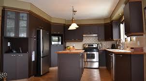 peindre des armoires de cuisine en bois 20 façons d améliorer sa cuisine soi même déconome