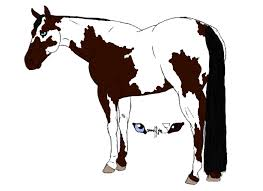 paint horse drawing auction by zephyranemos on clipart library