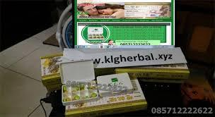 distributor agen jual obat klg pills herbal asli pembesar