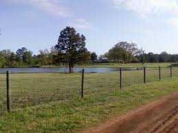 Texas Sale Barn East Texas Limestone Home 47 Acres Pond Barn U2013 United