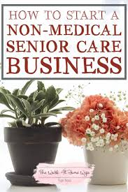 start a non medical home care business senior care business ideas