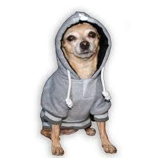 New York Giants Home Decor New York Giants Nfl Dog Hoodie Gray With Same Day Shipping