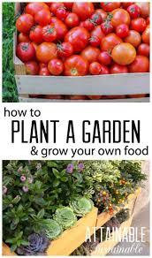 1511 best gardening ideas images on pinterest organic gardening