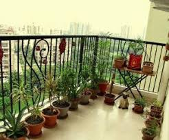 stunning small balcony garden ideas india this for all india
