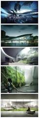 best 25 aquarium architecture ideas only on pinterest home