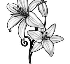 white lily tattoo tattoo collections