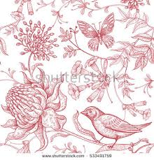 Flowers For Birds And Butterflies - bird drawing stock images royalty free images u0026 vectors