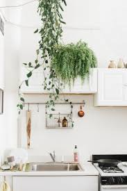 kitchen collection llc 10 ways to reset your kitchen for the new year kitchn