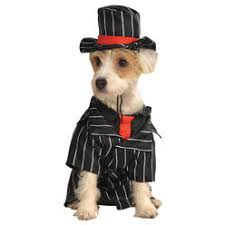 pets halloween costumes funny sears