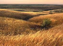 Kansas landscapes images Entitled november in the kansas flint hills jpg