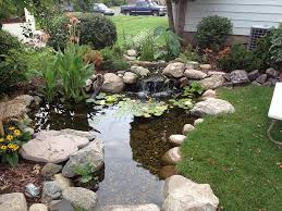 ecosystem pond contractor u0026 maintenance minneapolis st paul