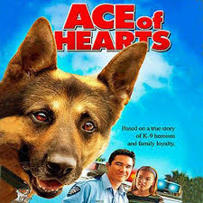movies with australian shepherds best images of famous dogs and famous dog names complete list