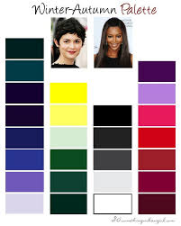 Autumn Color Schemes Best 25 Winter Color Palettes Ideas On Pinterest Winter Colors