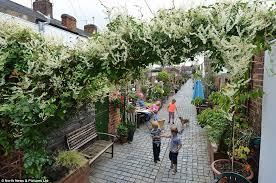 Terraced House Backyard Ideas Community Transforms Victorian Passageway Behind Middlesbrough