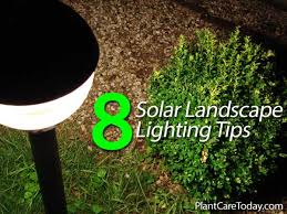 Led Landscape Lights by How Solar Powered Landscape Lighting Can Add Beauty To The Garden